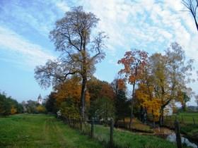 Widoki jesieni w Zagwiździu (7).jpeg