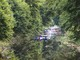 Spływ kajakowy po Budkowiczance (5).jpeg